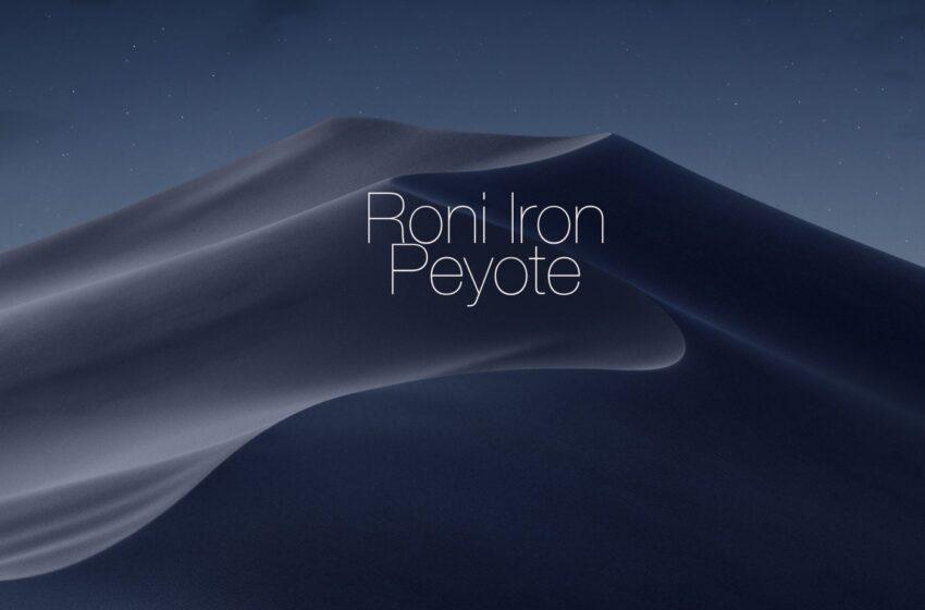 Roni Iron – Peyot (Cosmos Shape Remix)